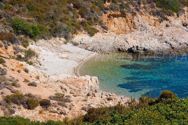 Crique sauvage à Revellata à proximité de Calvi - Corse