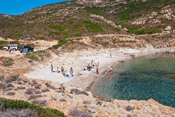 Oscelluccia beach in Calvi in Corsica