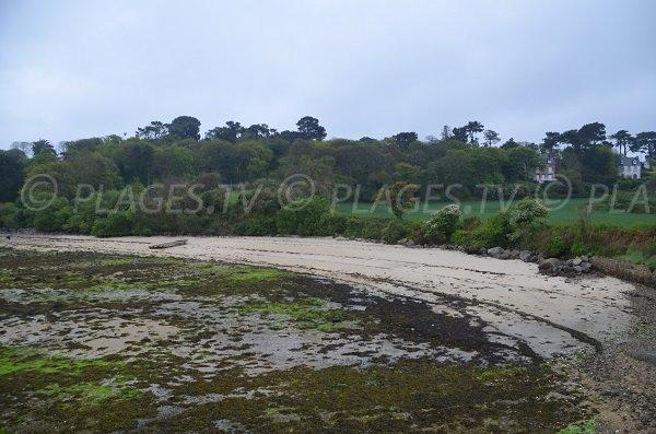 Photo d'une plage dans l'anse de Pellinec de Port Blanc à marée basse