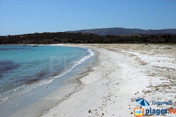 Spiaggia d'Arbitru - Corsica