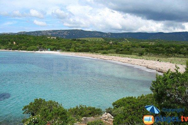 Foto della spiaggia d'Arbitru in Corsica