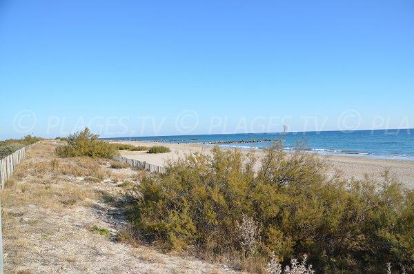 Photo de la plage des Aresquiers - zone surveillée en été