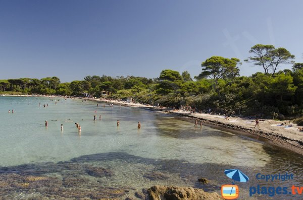 Argent beach in Porquerolles in France