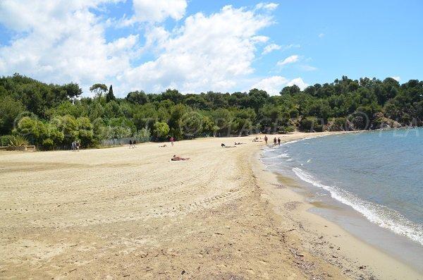 Foto della spiaggia dell'Argentière a La Londe - Francia