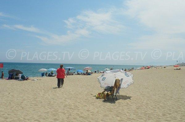Beach in Port Argelès near Port-Leucate