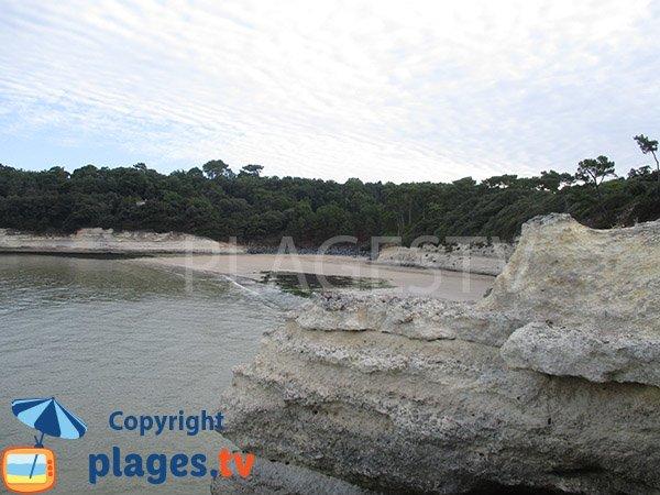 Photo de la plage de l'Arnèche à Meschers sur Gironde