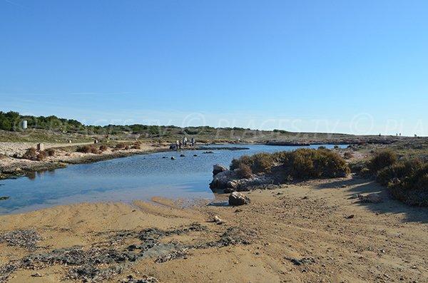 Spiaggia di sabbia - sentiero del litorale di  Martigues
