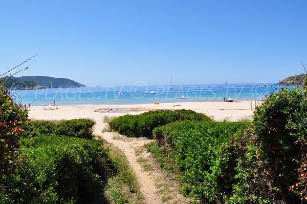 Sentier d'accès à la plage d'Arone