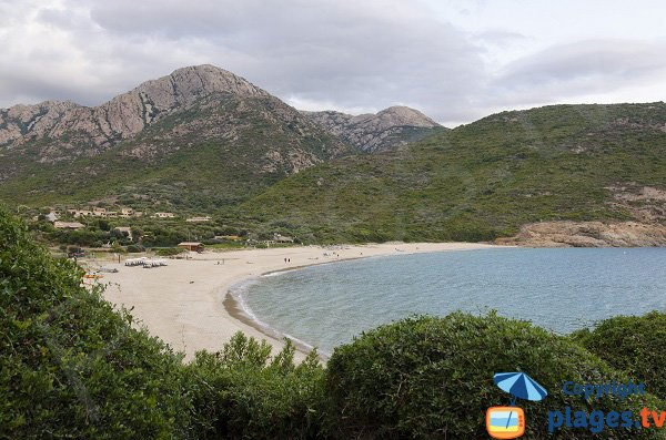 Photo of the Arone beach in Corsica