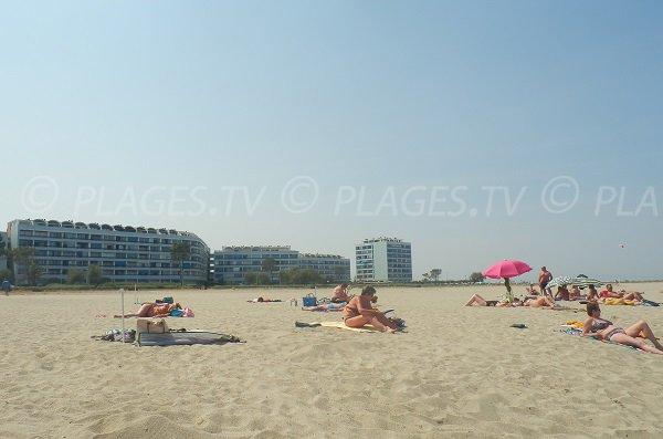 Environnement de la plage Nord de St Cyprien