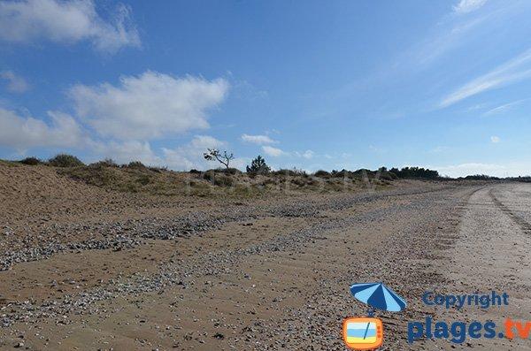 Grande plage d'Aytré