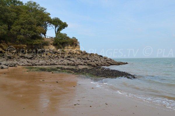 La plage baby à marée basse