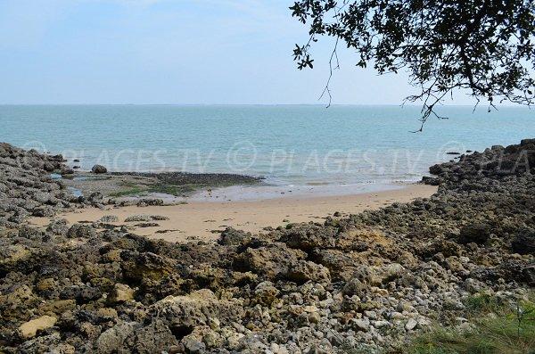 Des rochers impressionnants sur cette plage