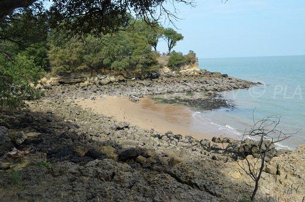 Baby plage de l'île d'Aix
