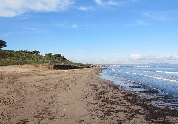 Badine beach in Hyères