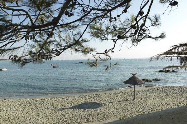 Spiaggia centro nudista Bagheera - Linguizzetta