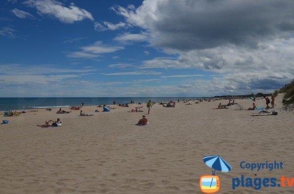 Photo de la plage de Bagnas à Marseillan - Cap d'Agde