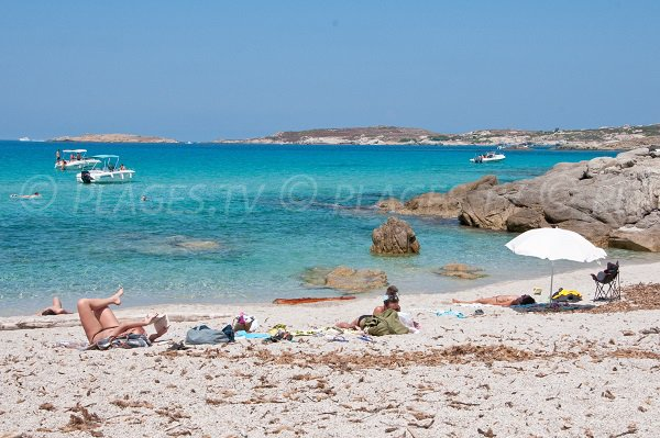 Crique secrète dans la baie d'Algajo en Corse