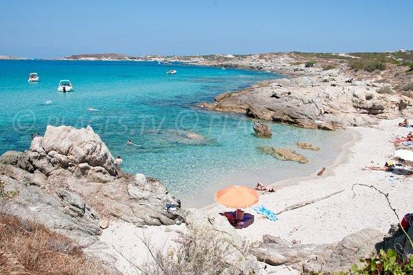Photo de la plage d'Algajo à Lumio en Corse