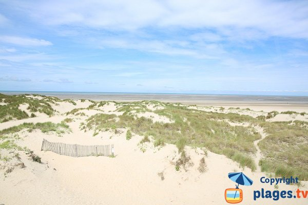 Dune area in Le Touquet near Canche bay