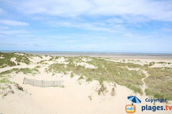 Espace dunaire au nord du Touquet