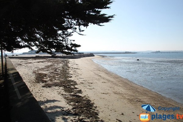 Cordon entre les deux plages de Sainte Anne - Saint-Pol de Léon
