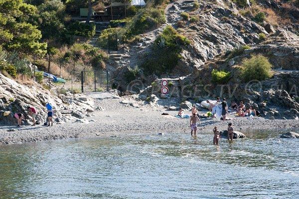 Photo de la plage Valenti de Port Vendres