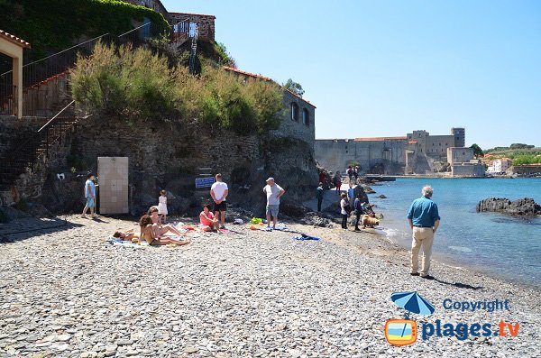 Balette beach of Collioure and view on the castle