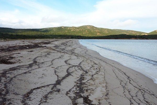 Photo de la plage de Balistra de Bonifacio en hiver