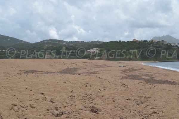 Environnement de la plage de Baracci à Olmeto