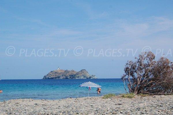 Plage sauvage dans le Cap Corse - Barcaggio