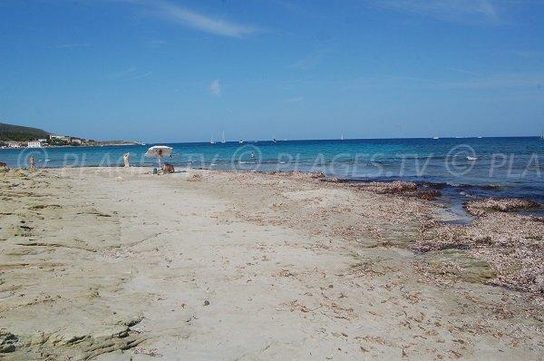 Plage de sable dans le Cap Corse - Barcaggio