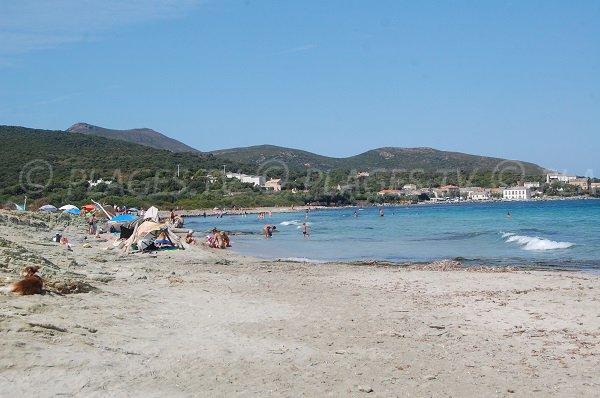 Plage de Barcaggio dans le Cap Corse