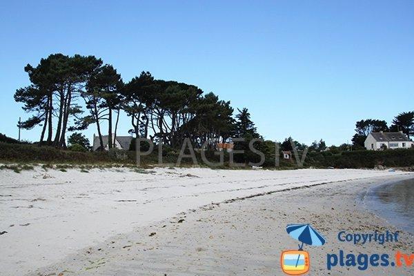 Environnement de la plage de Bassinig à Plouguerneau