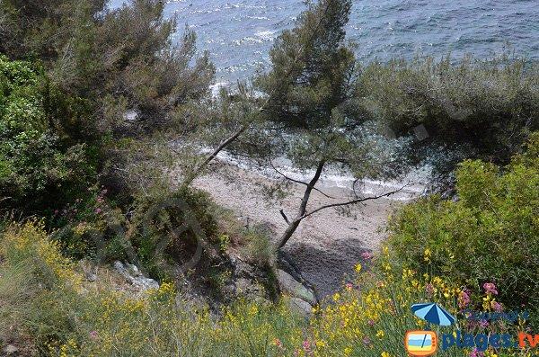 Secret beach in Toulon
