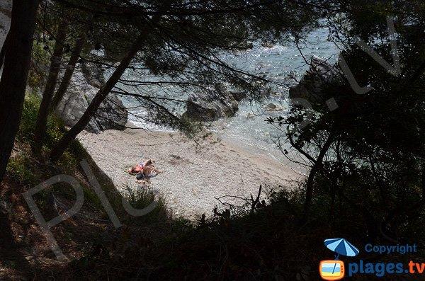 Confidential cove in Toulon