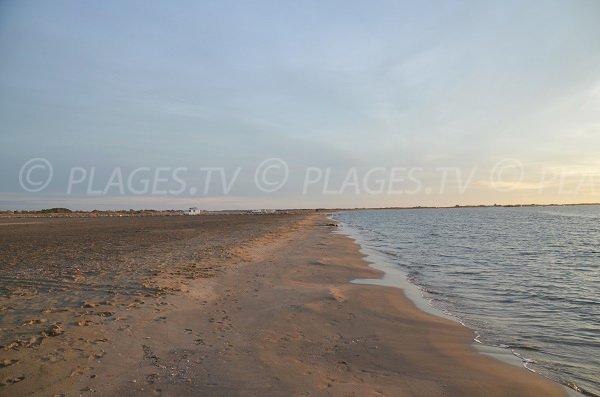 Beach of Beauduc and view on Piemanson beach - France