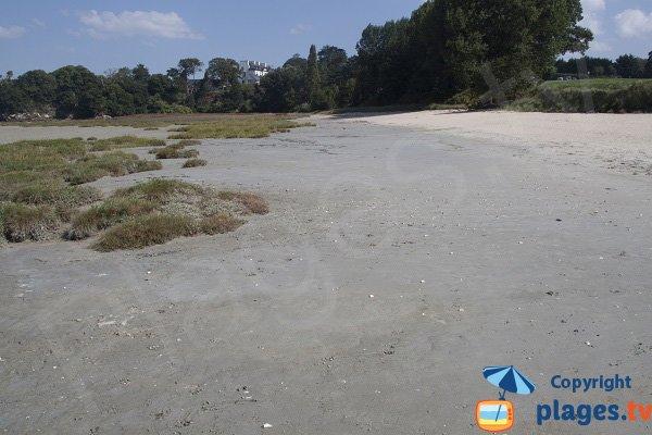 Environnement de la plage de la Beaussais