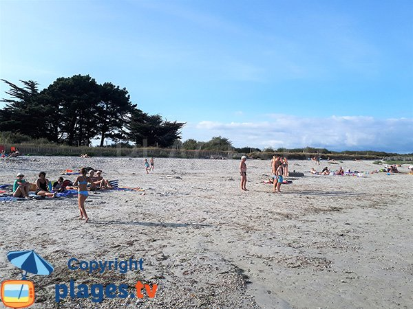 Environnement de la plage de Beg Lann - Sarzeau