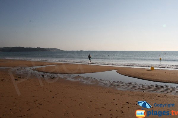 Vue sur l'ile de Batz depuis la plage de Goaslagorn