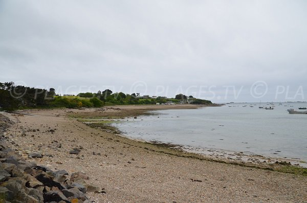 Photo de la plage de Beg Vilin à Plougrescant