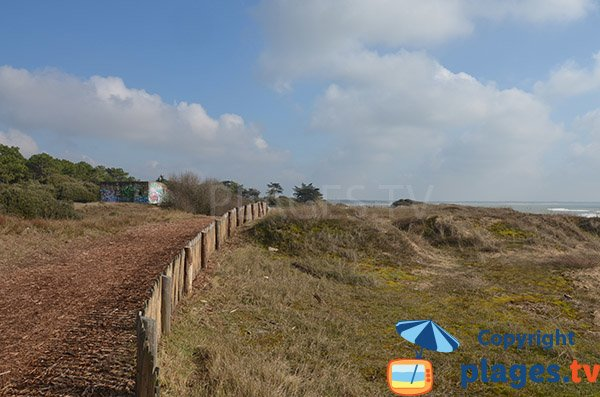 Sentier le long des plages de St Vincent sur Jard