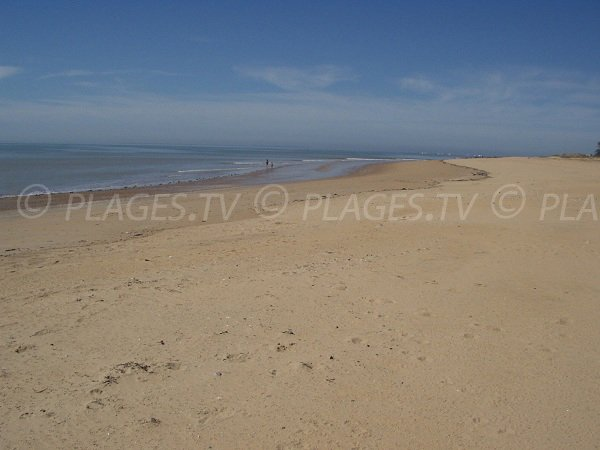 Most beautiful beach in La Tranche sur Mer