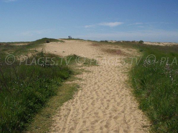 Sentier d'accès à la plage de la Belle Henriette