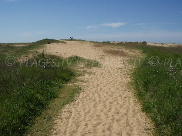Access to Belle Henriette beach in La Tranche sur Mer