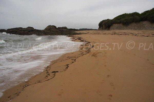 Foto della spiaggia Belmont a La Turballe