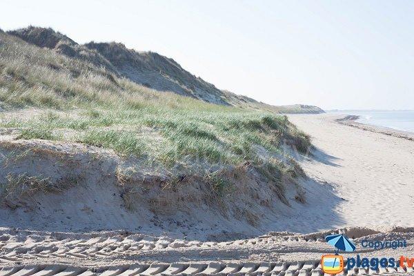 Dunes of Pirou