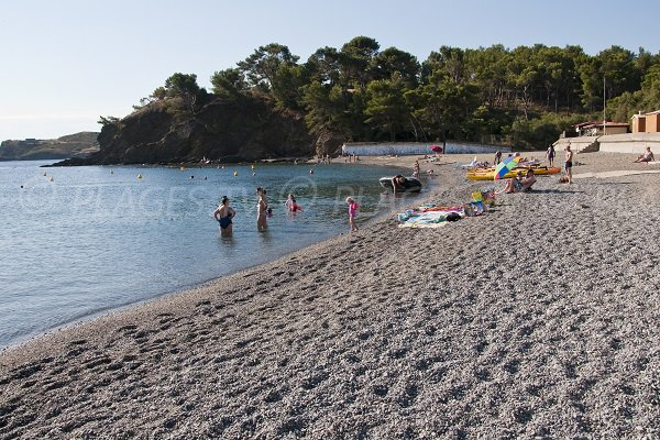Supervised beach in Port Vendres - Paulilles