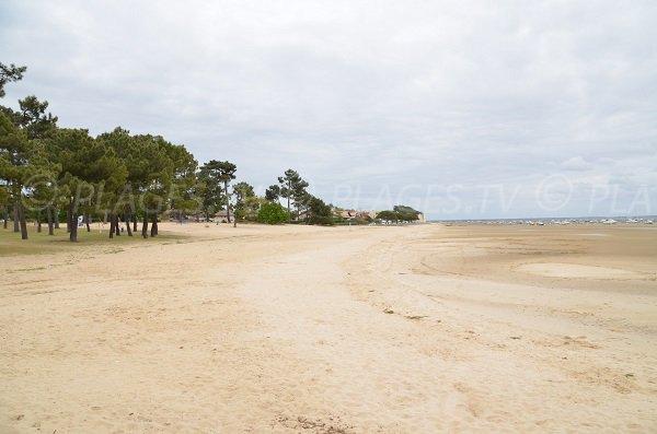 Photo de la plage de Betey à Andernos les Bains