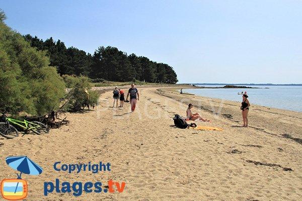Photo de la plage de Bilhervé sur l'ile d'Arz